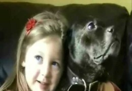 Child and Staffordshire Bull Terrier