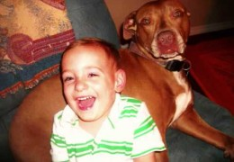 Boy Growing up With A Pit Bull