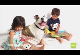 Dogly-Like A Pit