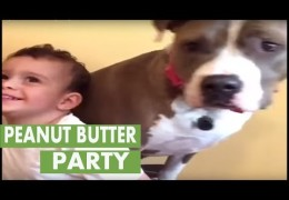 A Toddler and Pit Bull Throw A Peanut Butter Party