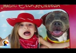 Little Girl Sings To Her Pittie 'You've Got A Friend In Me'